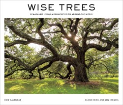 Wise Trees 2019 Wall Calendar Remarkable Living Monuments from Around the World